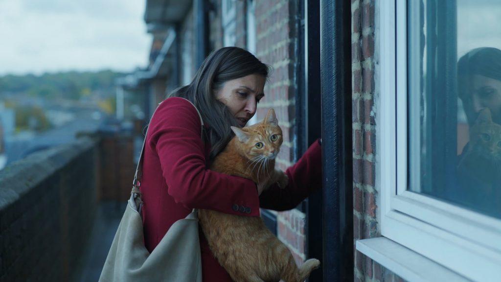 CAT IN THE WALL de Mina Mileva et Vesela Kazakova